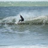 _DSC8801.thumb.jpg