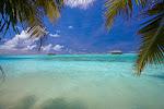 Island View of Honeymoon WV.jpg
