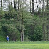 17. Mai 2016: On Tour in Pechbrunn - DSC_0320.JPG
