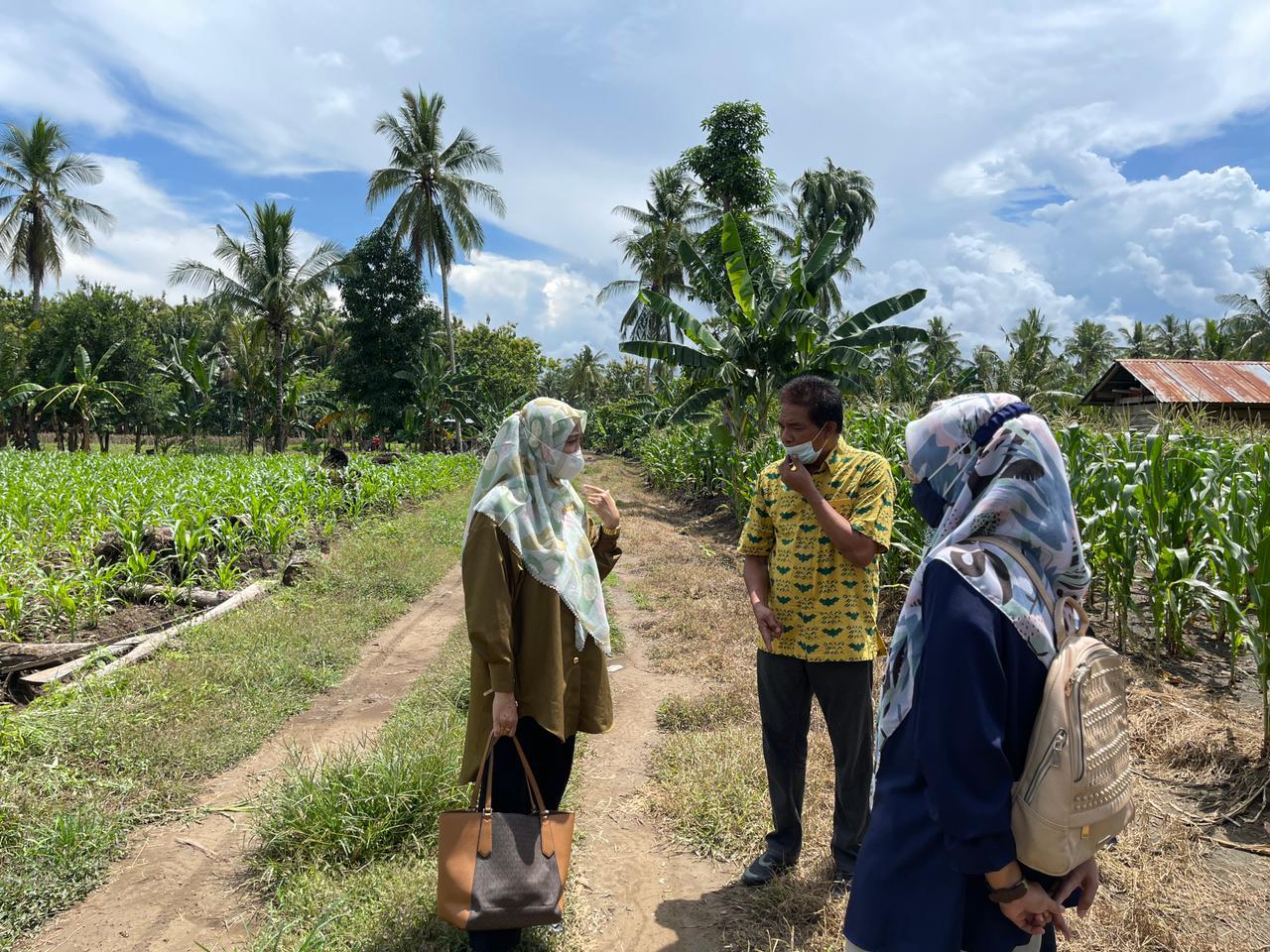 Gelar Kunjungan Dapil, Andi Nurhidayati Tinjau Lokasi Pembangunan Jalan Tani di Lompulle