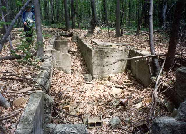 Willis Ward House foundation on Apple Island The long narrow basement housed the sailboat mast for winter storage