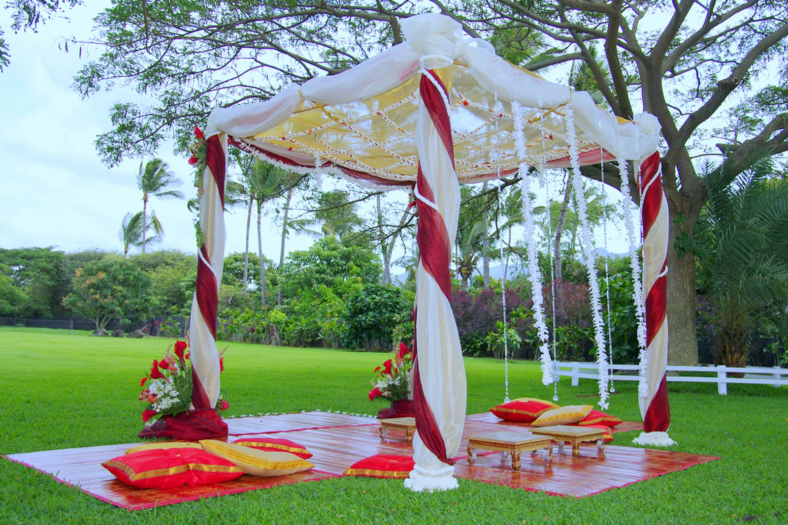 Draping Plants Marion Wanted An Elegant But Simple Mandap That Would