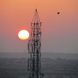 Sunset, tower, kites. The view from Kuku's.