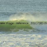 _DSC7383.thumb.jpg