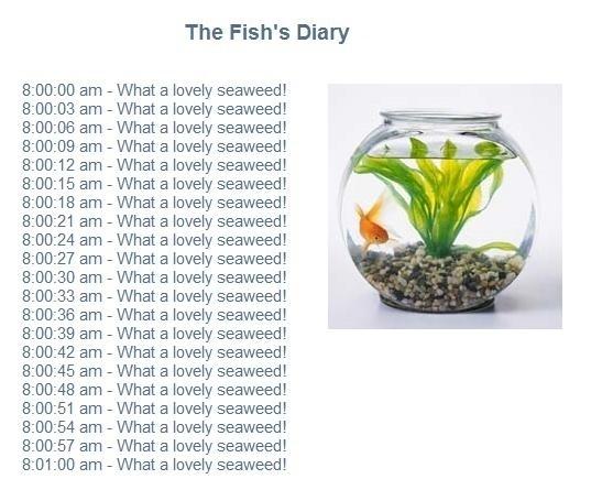 Fish's Diary