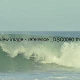 _DSC0090.thumb.jpg
