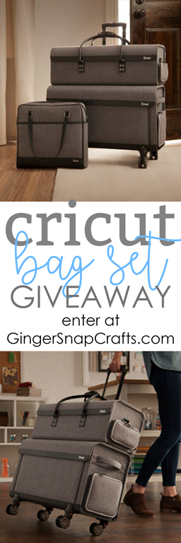 Cricut Bag Giveaway #craftroom #storage #organization
