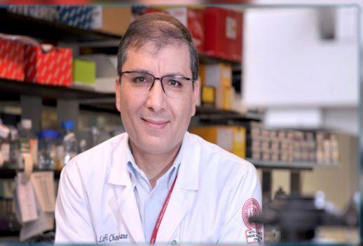 بروفسور تونسي في علم المناعة: الجمال مصدر لمضادات كورونا