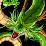 CHORUS tekken's profile photo