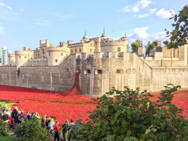 Tower-of-London-poppies-installation