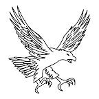 voar-eagle-preto-branco.jpg