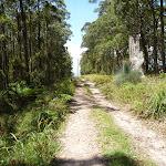 Trail west of Heaton Gap Lookout (359249)