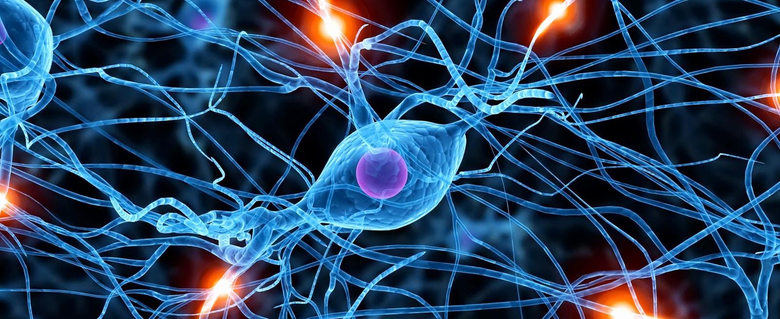 synapse wallpaper download - photo #34