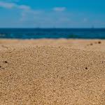 Summer-16.jpg