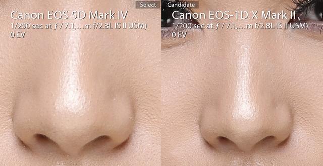 Nose comparison