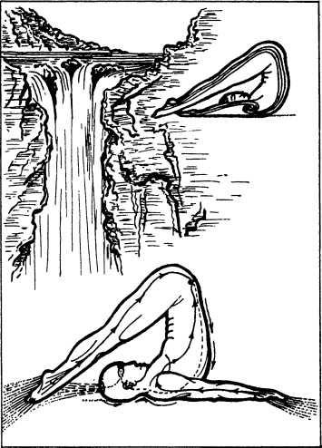 5. Упражнение «Халасана» (плуг)