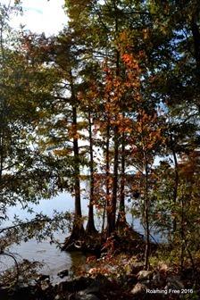 Fall Colors in South Carolina