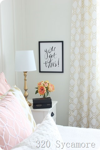 pink gold teenage girl room