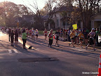 Half marathoners coming up Park Drive. This was a great corner for watching the race!
