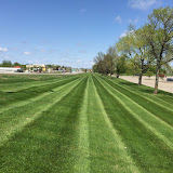 Commerical Lawn Care - Runnings