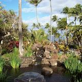 Hawaii Day 6 - 100_7593.JPG