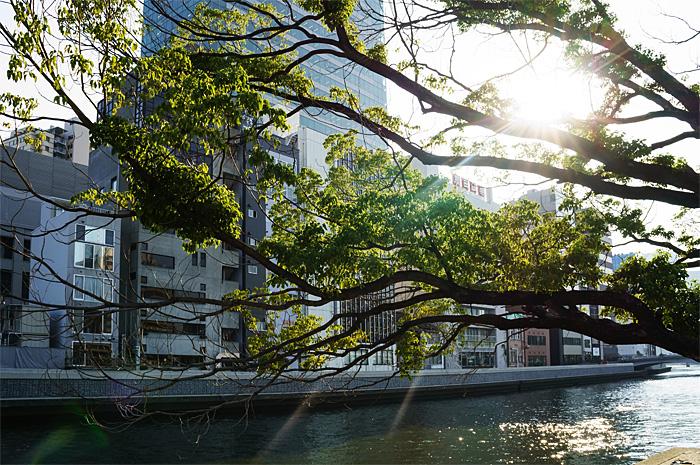 Osaka25.jpg
