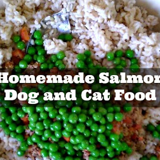 Homemade Salmon Dog and Cat Food