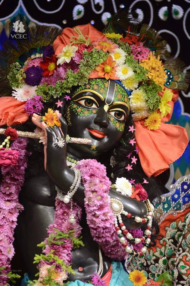 ISKCON GEV Deity Darshan 15 Dec 2015 (1)