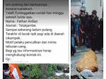Breaking News : Mayat di Bungkus Plastik di Cilamaya Itu Mahasiswa Telukjembe, Berikut Lengkapnya !