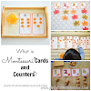 What is Montessori Cards and Counters?