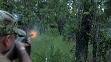 The hunter has just fired his double rifle. The bull is just visible in the brush, standing broadside.