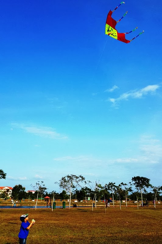 Fly High, My Kite