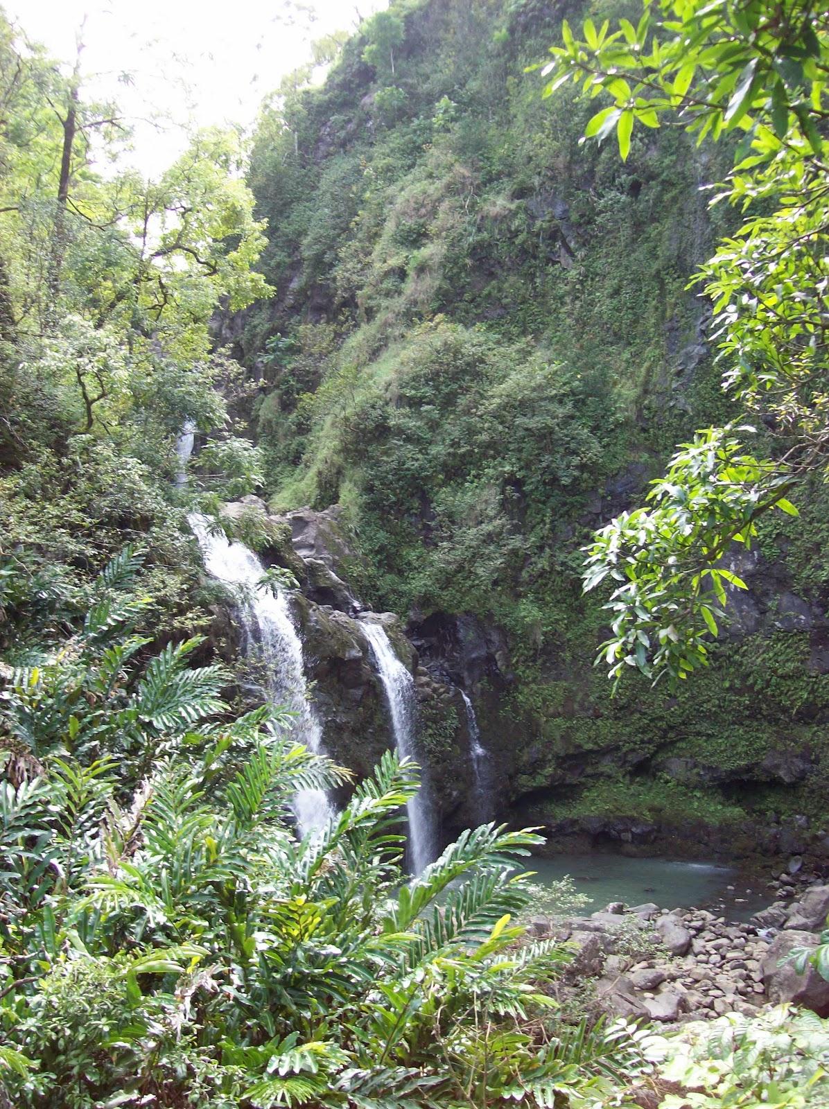 Hawaii Day 5 - 100_7544.JPG