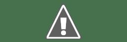 Image result for Anzilotti family dentistry logo