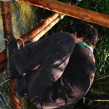 Vozlarija 890, Ilirska Bistrica 2007 - P0097282.JPG