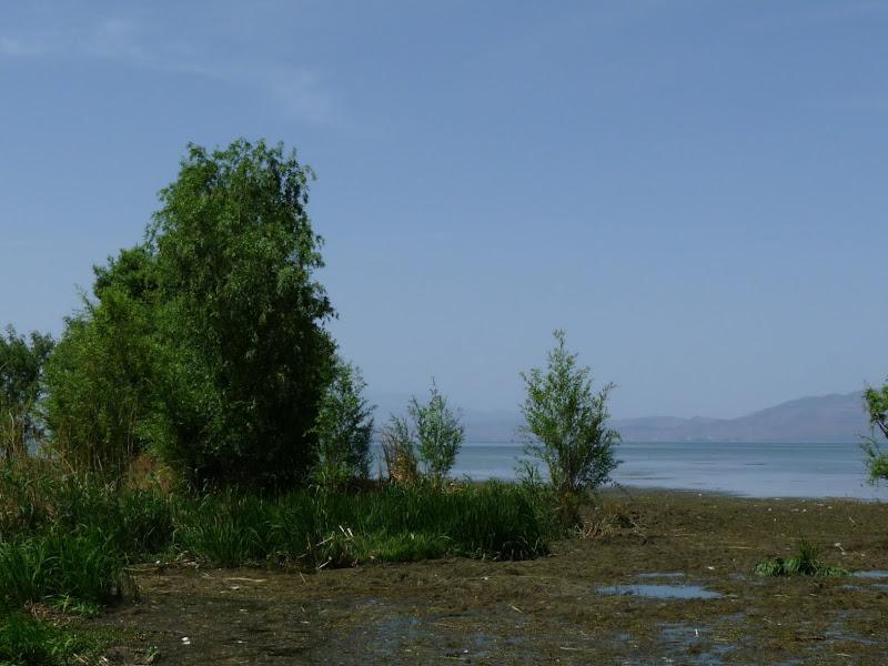 Chine. Yunnan Dali .En vélo vers le lac ERHAI - P1170744.JPG