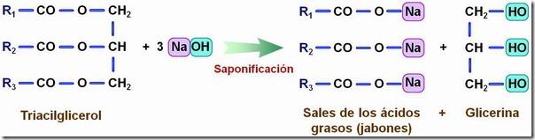 reaccion de saponificacion