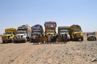 Treize contrebandiers arrêtés dans le sud du pays et 310 kg de drogue saisis à Tlemcen (MDN)