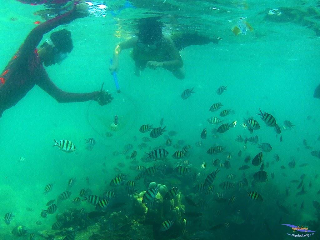family trip pulau harapan, 1-2 agustus 2015 gopro 35