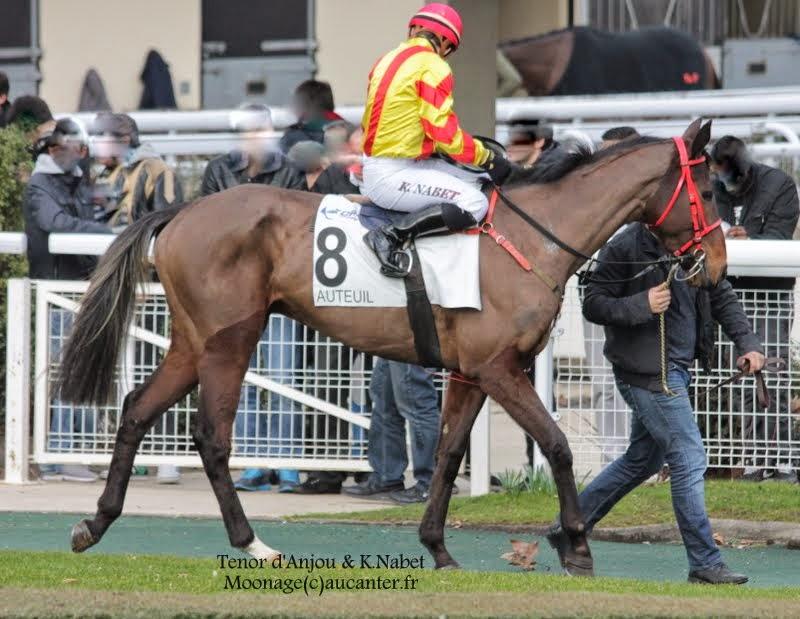 Photos Auteuil 1-03-2015 IMG_6980