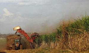 Power From Biomass A Renewable Electricity Generation Option For Rural And Urban India