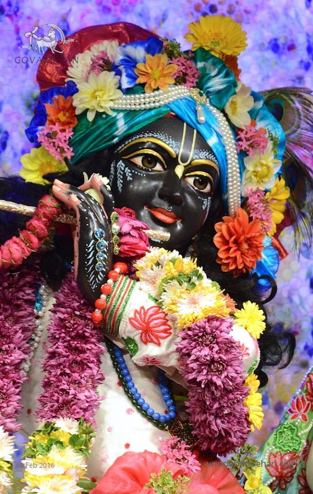 ISKCON GEV (Wada) Deity Darshan 08 Feb 2016 (1)