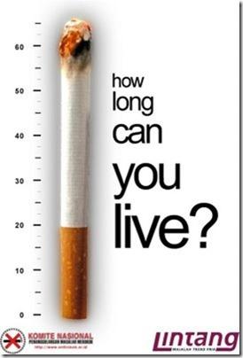 anti tabaco dia 31 mayo (4)