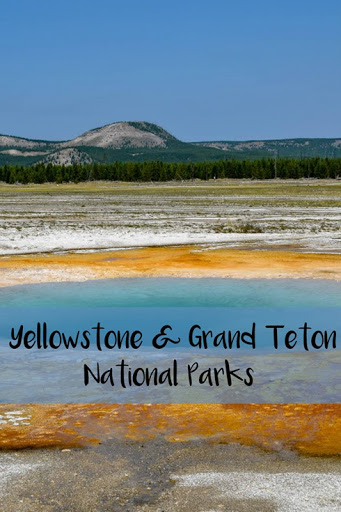 Yellowstone Day 2 and Grand Teton National Park