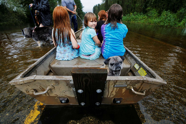 Iva Williamson, 4, peers behind her as she joins neighbors and pets in fleeing rising flood waters from Hurricane Florence, on 16 September 2018, in Leland, North Carolina. Photo: Jonathan Drake / Reuters