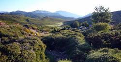 Plateau du Coscione GR20 sud