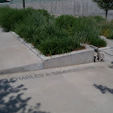 Dallas Fort Worth vacation - 100_9861.JPG