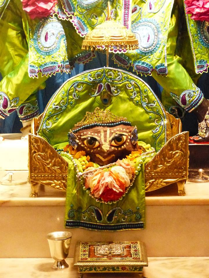 ISKCON New Govardhan Deity Darshan 01 Mar 2016 (5)