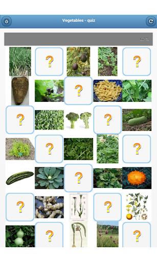 玩免費益智APP 下載Vegetables - quiz app不用錢 硬是要APP