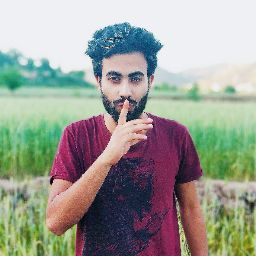 Mohsin Gulzar